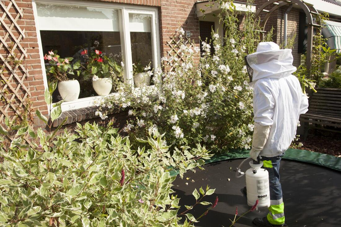 man spraying pesticides on flowers